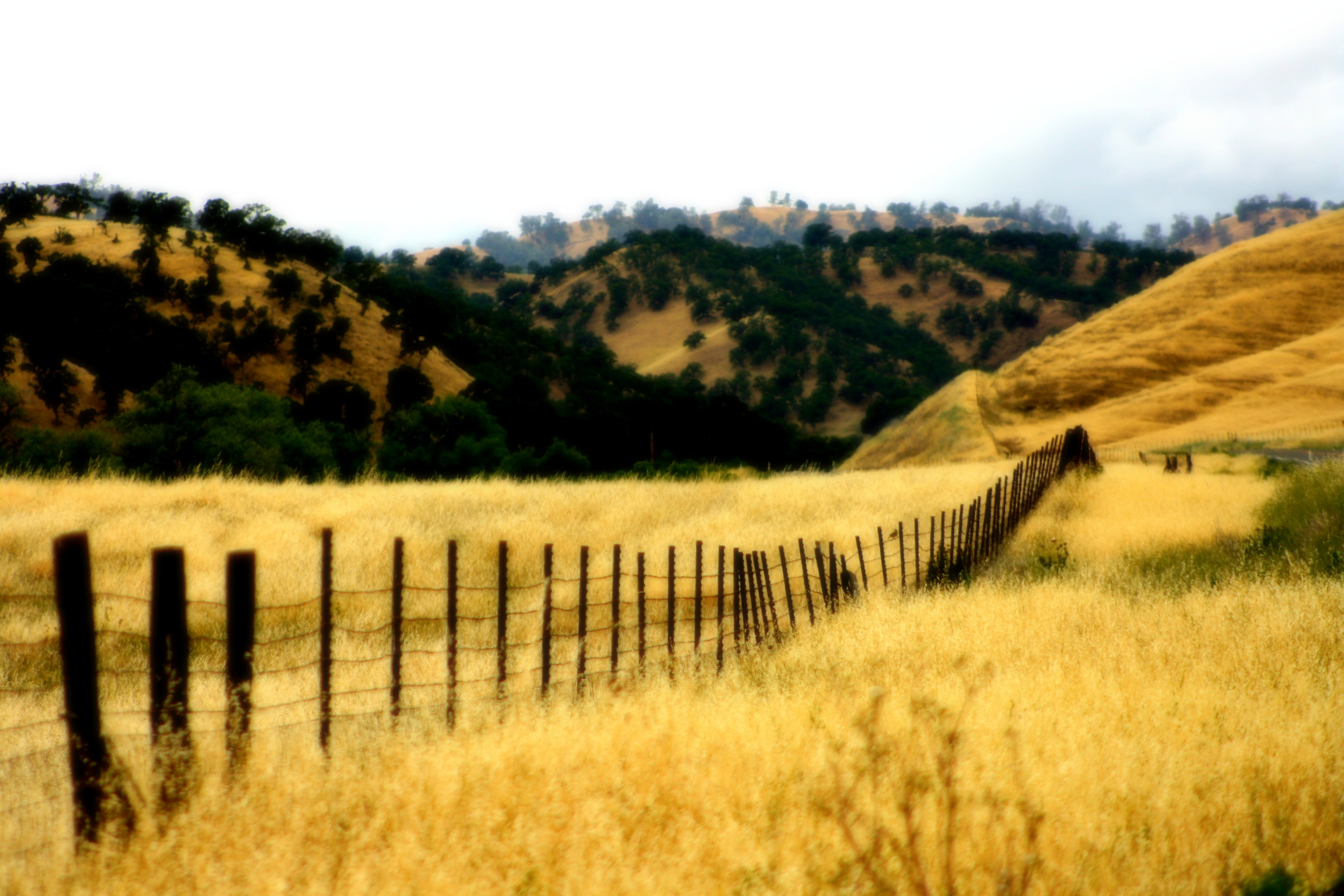 Northern California countryside